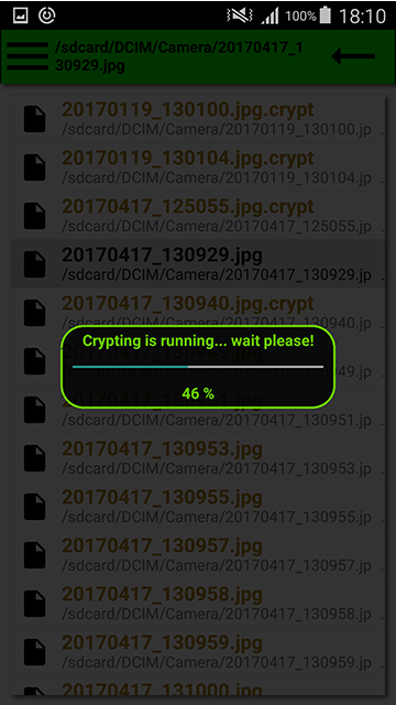 Crypting.Protect file.